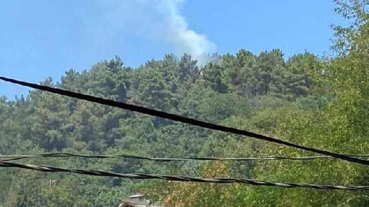Beykoz yangınının verdiği hasar tespit edildi!