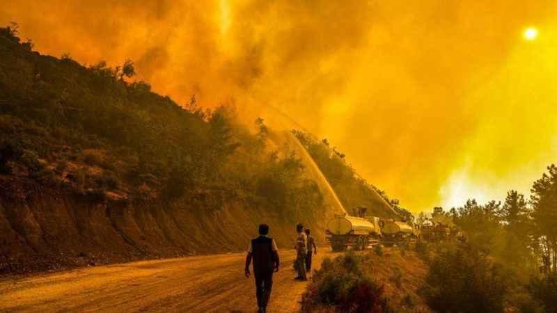 Manavgat'taki yangını 12 yaşındaki çocuk çıkarmış! İşte ilginç sebebi