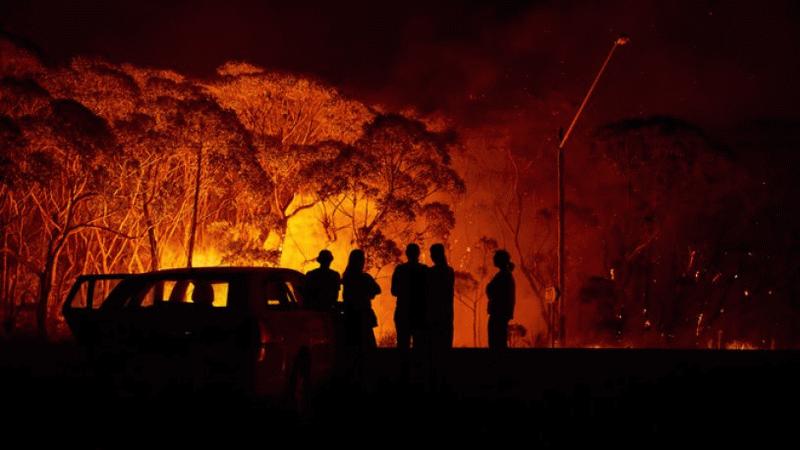 Cezayir'deki orman yangını: 25 asker hayatını kaybetti