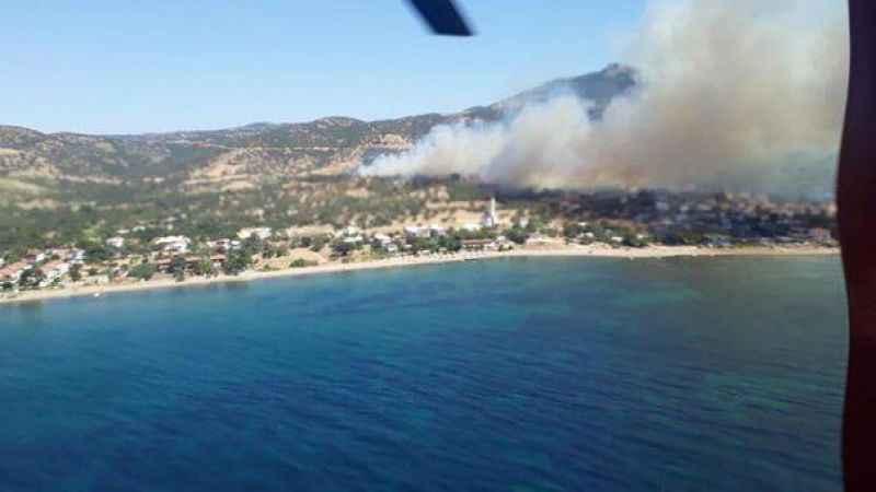 Çanakkale'nin Ezine ilçesinde orman yangını!