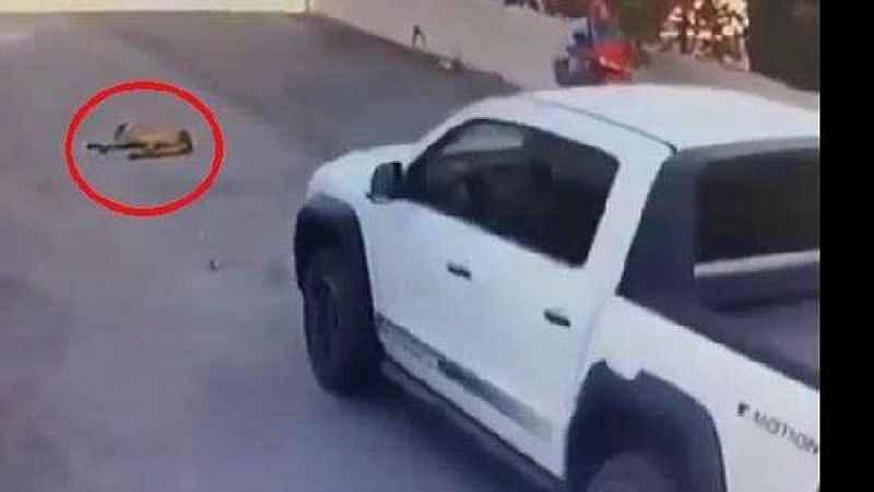 Vicdansız sürücü yolda yatan köpeği kamyonetle ezip kaçtı