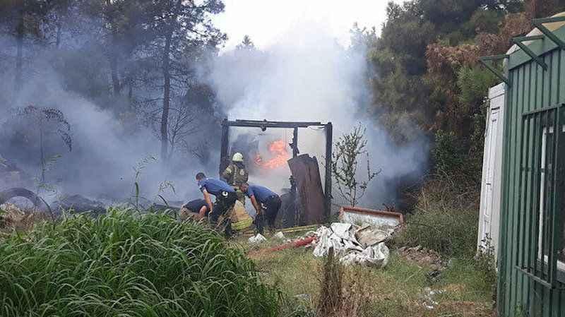 İstanbul Maltepe'de orman yangını!