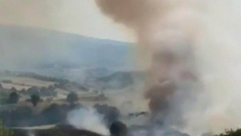 Bursa'da ayçiçeği tarlasındaki yangın ormanlık alana sıçradı!