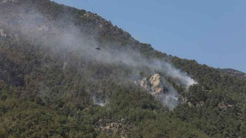 İzmir'de Aliağa ve Foça'da orman yangını
