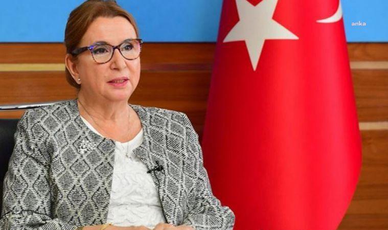 CHP, RUHSAR PEKCAN HAKKINDA MECLİS SORUŞTURMA ÖNERGESİ HAZIRLADI