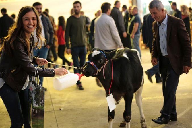 Sakarya Hendek'te 2.Tarım Hayvancılık Makinaları Teknolojileri ve Yem Fuarı