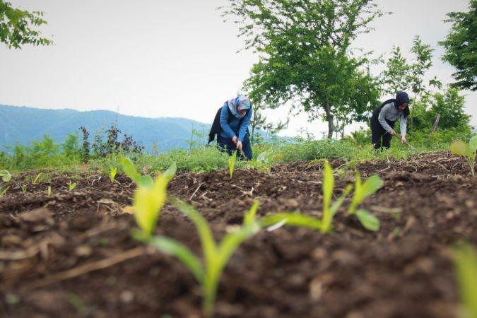 Kırsalın girişimci kadınları, bu projeyle daha da güçlendi