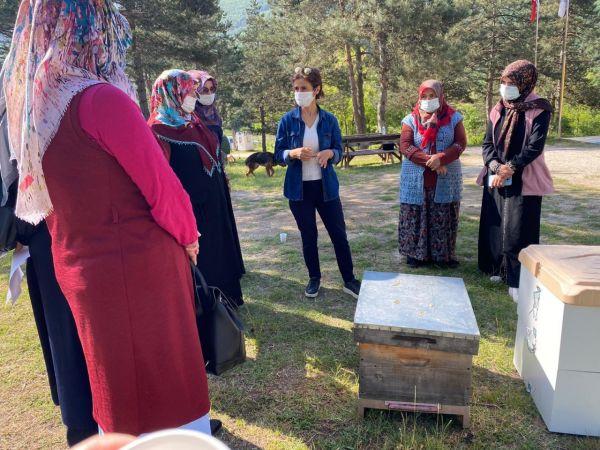 Ana arı üretim kursuna, kadınlar ve gençlerden büyük ilgi