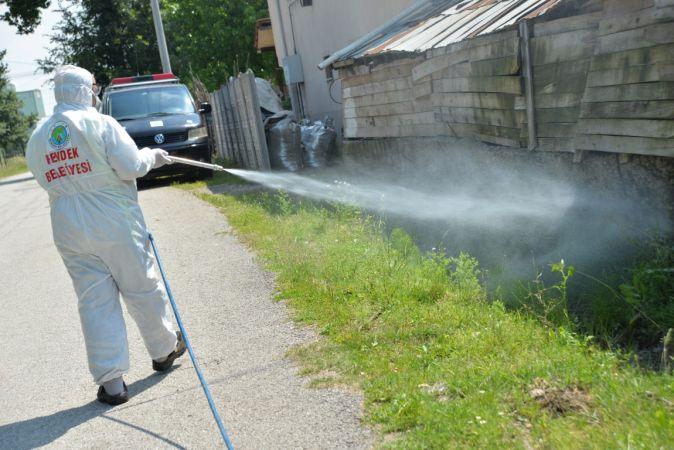 Hendek Belediyesin Denetkin Larva Mücadelesi