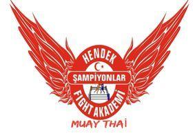Hendek  fıght akademi spor kulübünde muay thai yaz kayıtları başladı