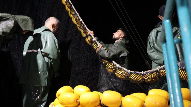4.5 ayın ardından ağlar yeniden balık doldu