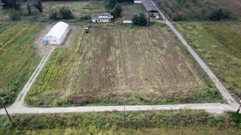 Tarımsal kalkınma projesi başlıyor