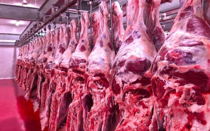 Düzce'de bir ayda 197 ton et tüketti