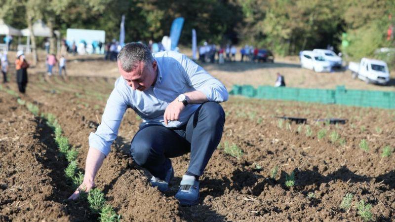 """""""Sanayi kenti"""" Kocaeli'de alternatif ürünlerle ekonomiye destek sunulacak"""