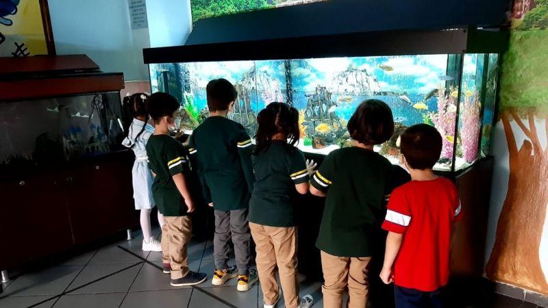 Gebze Kroman Çelik İlkokulu'nda öğrencilere hayvan sevgisi aşılanıyor!