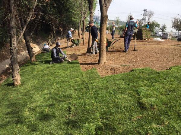 Derince'deki stadın çimleri, Dilovası Batı Kavşağı'na serildi