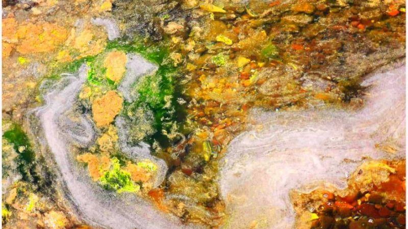 """Sanatçı bakışı işte böyle bir şey… Denizlerimizi tehdit eden """"müsilaj"""" sanata dönüştü!"""