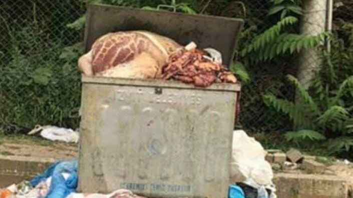 300 ton kurban atığı çöpe atıldı!