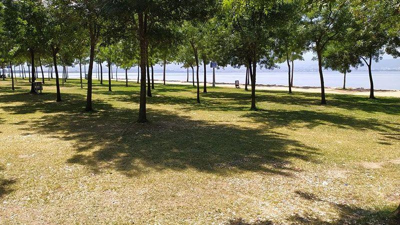 Kavurucu sıcaklar yüzünden sahiller bile boş kaldı!