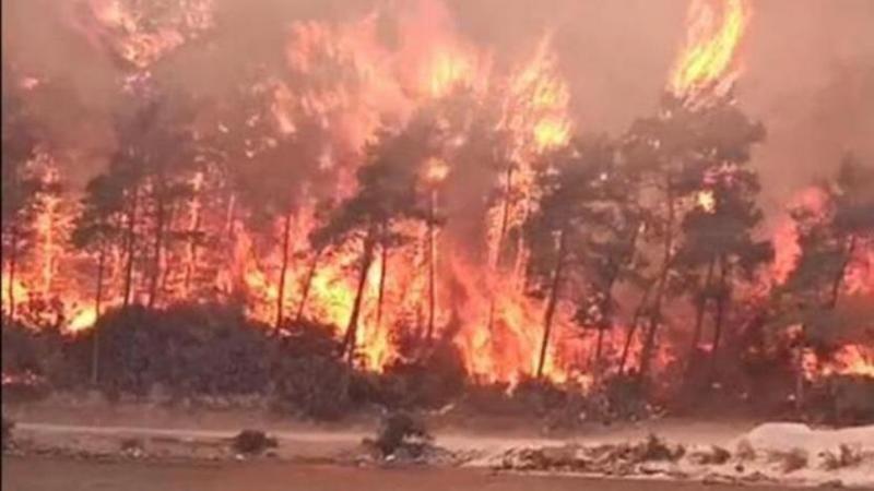 TMMOB yangın bölgesi için harekete geçti
