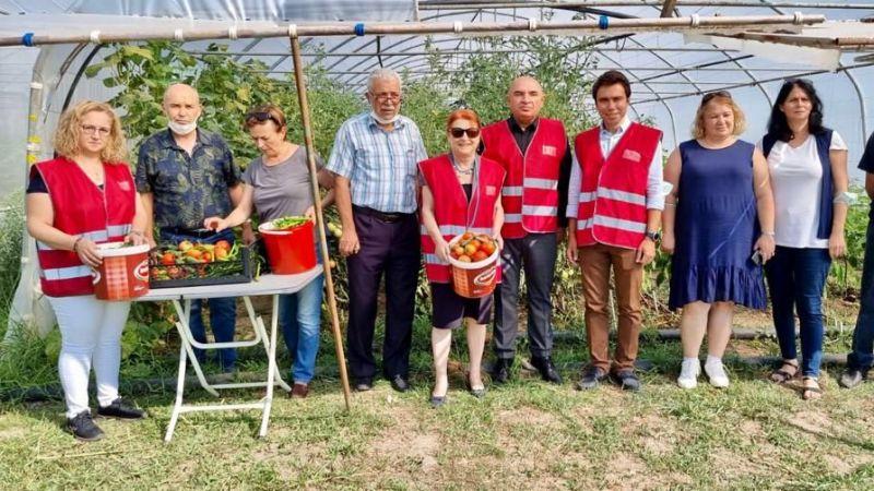 """CHP Kocaeli'den örnek proje: """"Halkın serası projesi"""""""