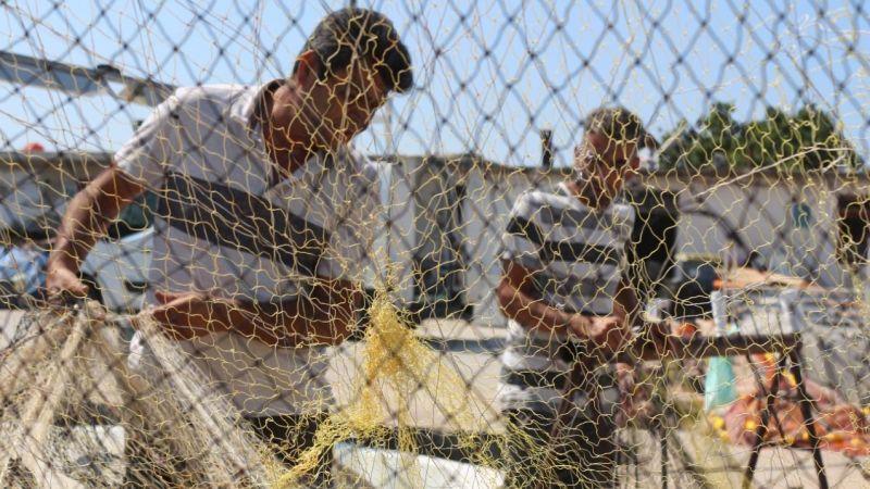 Kandıralı balıkçılardan palamut tutkunlarını üzecek haber!