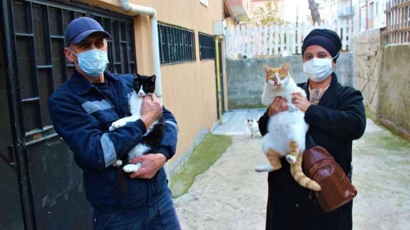 10 yıldır sokak kedilerine bakıyor! Bakın onlar için ne yaptı?