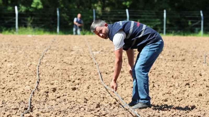 İzmit Belediyesi sebze bahçesi, fide ekimine hazırlandı