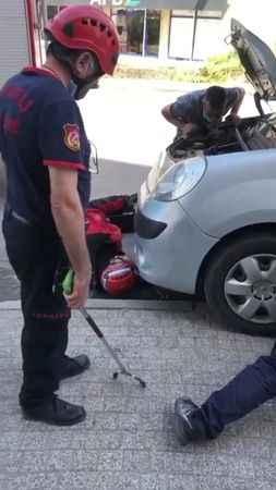 Aracın motoruna sıkışan yavru kediyi itfaiye kurtardı