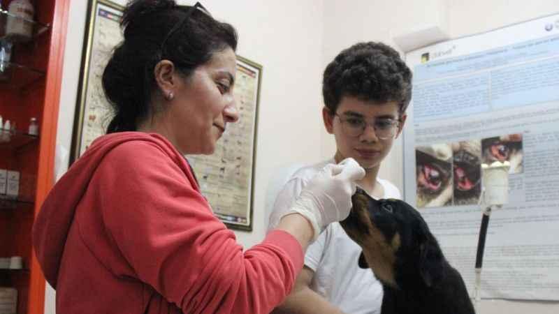 """Veterinere şaşırtan soru: """"Kedi, köpeğe taktığınız çipi kızıma da takabilir misiniz?'"""