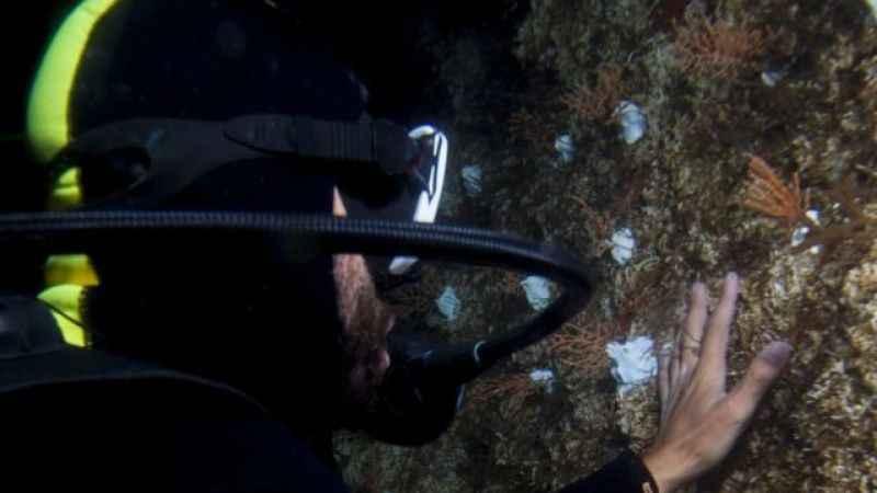 DP World Yarımca'dan denizler için nefes aldıran adımlar