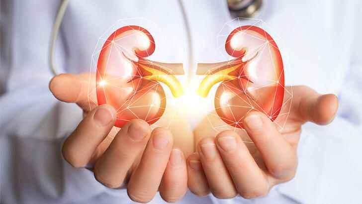 Covıd-19 pandemisinin organ bağışı ve organ nakli üzerine etkisi