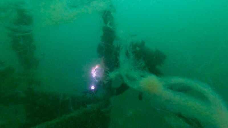 """Kocaeli'de su altındaki """"emektar vapur"""" müsilajla kaplandı"""