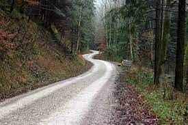 Yeni orman yolu yaptırılacak