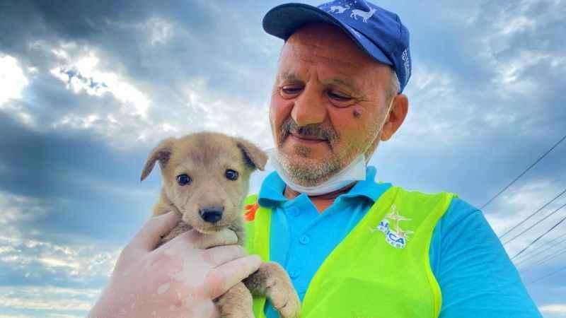 Sokak hayvanlarının Ekrem amcası şefkatiyle örnek oluyor