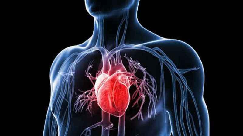 Dikkat yoğun egzersiz, kalp sorunlarını ikiye katlayabiliyor