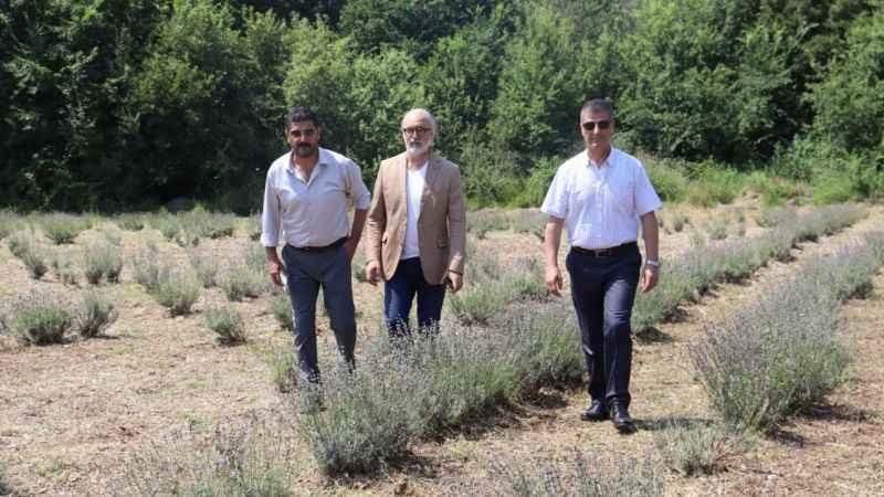 İzmit Belediyesinden Lavanta Bahçesi iddialarına yanıt