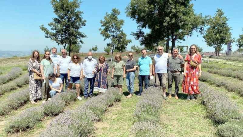 Yılın ilk lavanta hasadı Karamürsel'de yapıldı