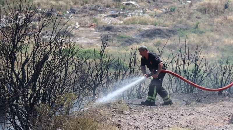 Yangında yaklaşık 20 dönümlük ormanlık alan zarar gördü
