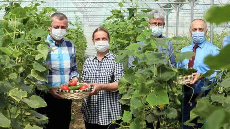 Bayraktar köyünde ilk hasadı, Başkan Büyükakın yaptı