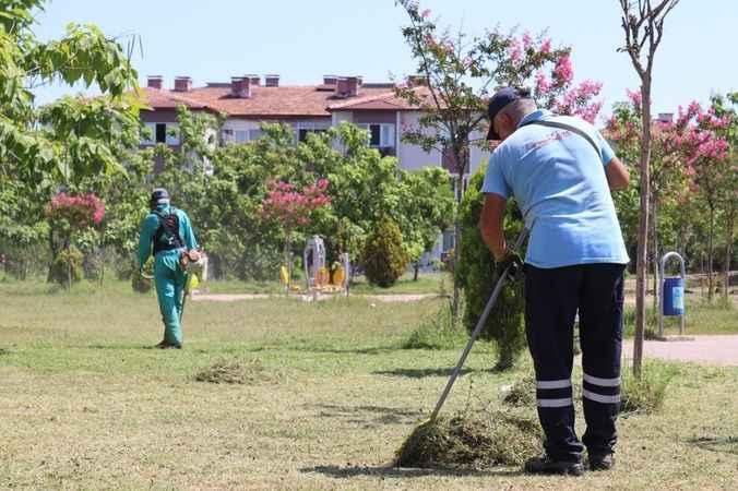 İzmit Belediyesi, yeşil alanları pırıl pırıl yapıyor