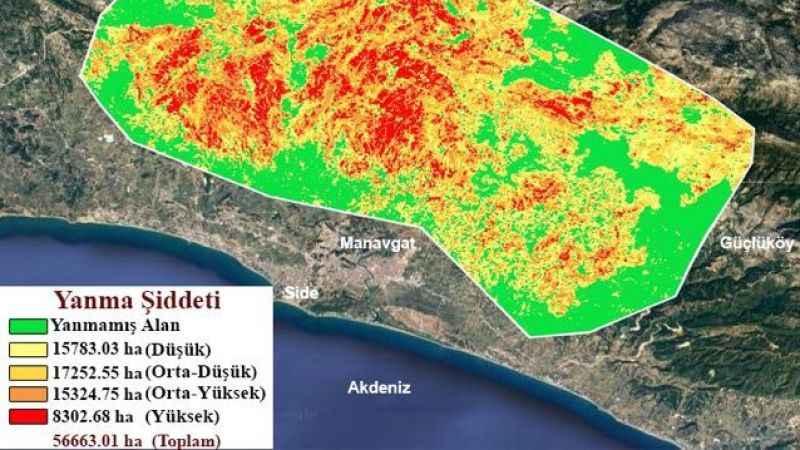 GTÜ, orman yangınlarının etkili olduğu alanları haritalandırdı