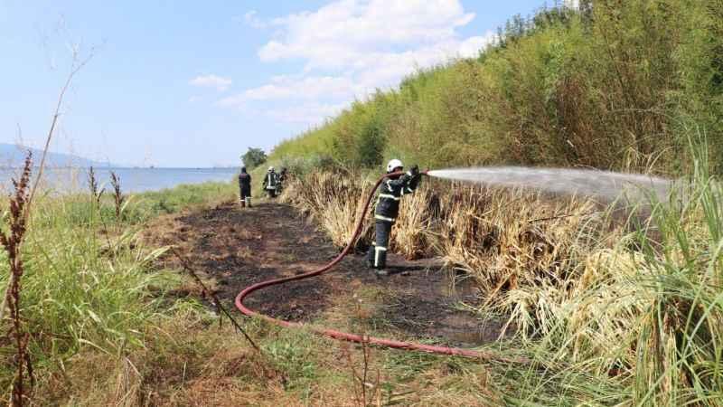 İzmit'te 400 metrekarelik sazlık alan yandı
