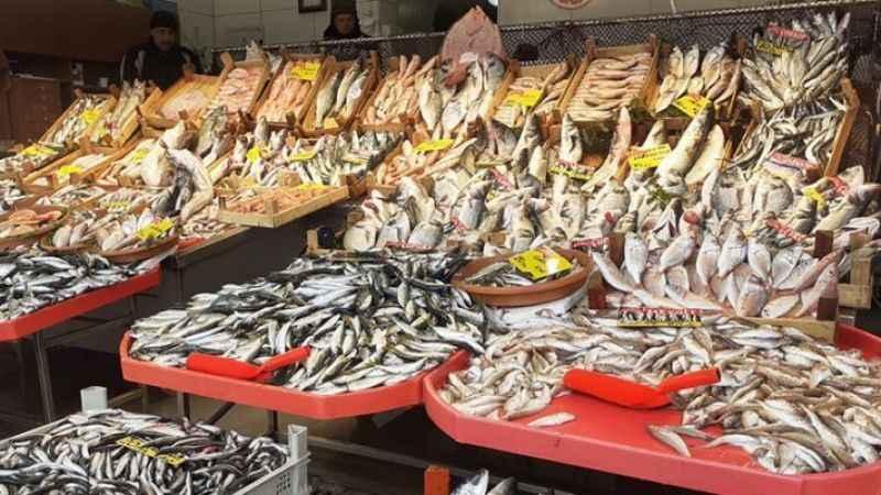 Müsilaj devam ediyor! Peki denizden çıkan balık yenilir mi?