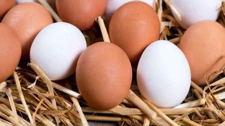 Yumurta fiyatları yükselişe geçti! Artan fiyatlar mercek altında...
