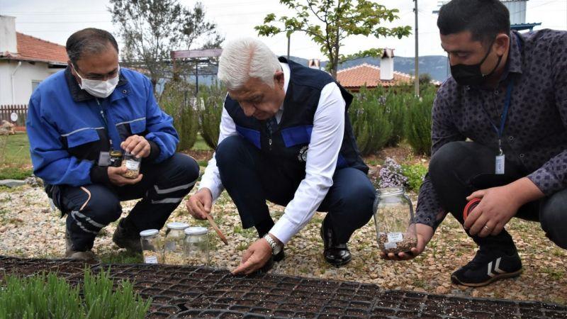 Yerel tohumlar 2022 için toprakla buluştu
