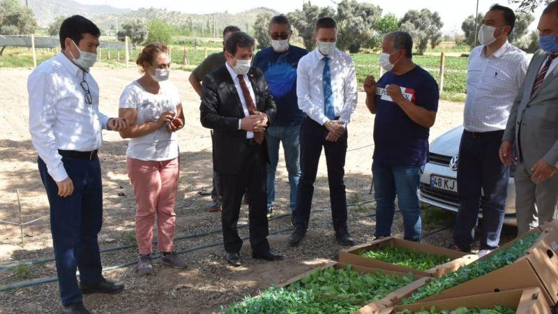 Vali Tavlı, Milaslı tarım üreticilerini ziyaret etti