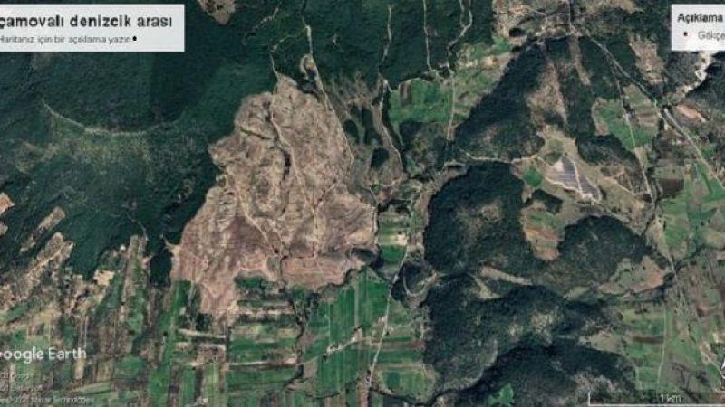 Milas Emekli-Sen'den, orman katliamlarına tepki