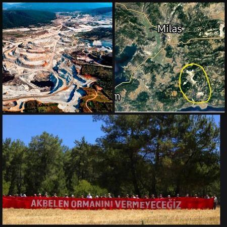 Ünlü sunucudan İkizköy direnişine destek