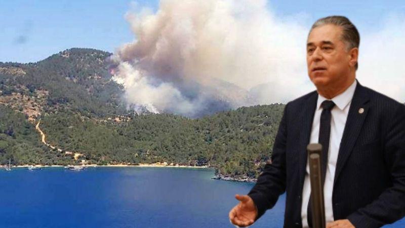 Orman alanlarını yangınlara kurban ediyoruz